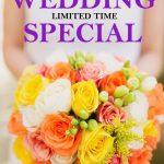 2017 WEDDING SPECIAL!